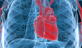heart-valve-thumb